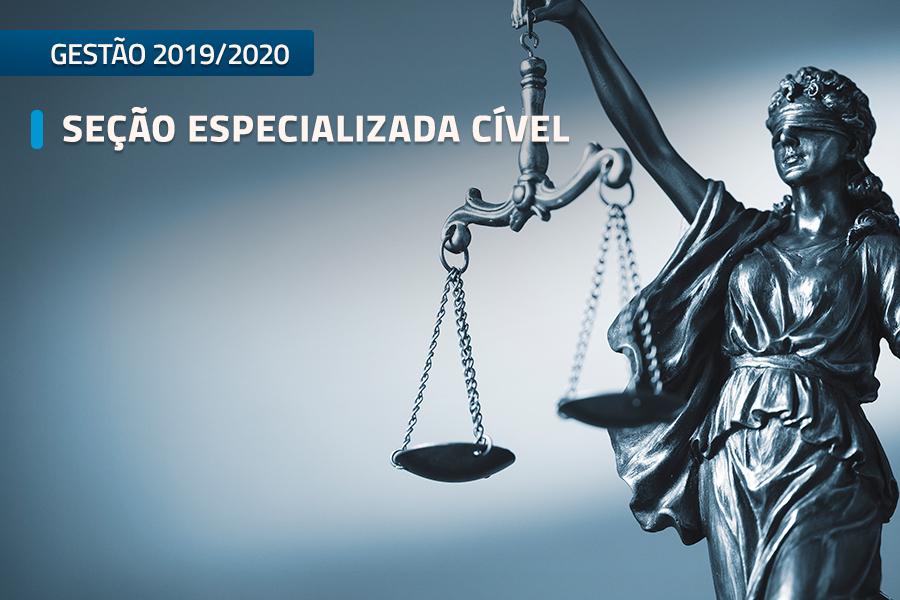 Seção Especializada Cível do TJAL julgou 176 processos no biênio 2019-2020