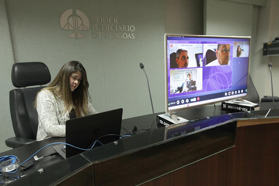 Sessão virtual foi realizada na tarde desta terça-feira (29).